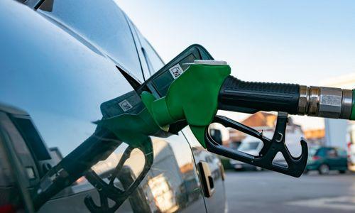 先进生物燃料生产技术