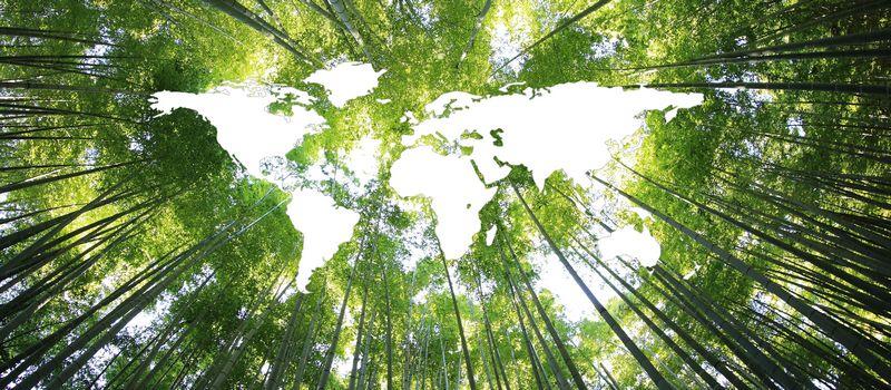 行业动态   国际能源署(IEA):要实现能源转型和气候目标,全球需要大力开发和部署清洁能源技术