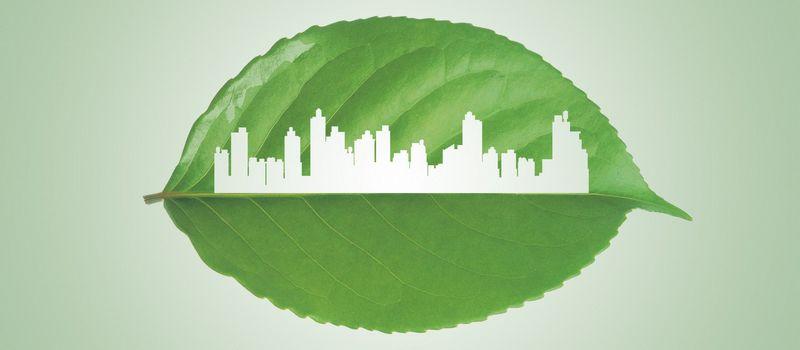 公司新闻   三聚环保实现符合欧盟标准的低凝二代生物柴油产出